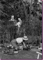 gardening in skirt2