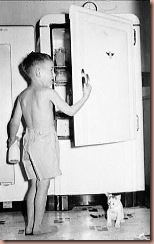 fridgeold