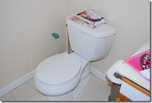 toilet...shiny and new.