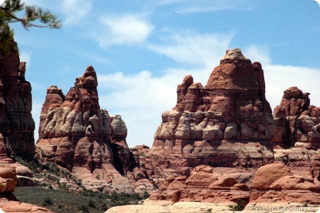 CanyonlandsNeedles_2434