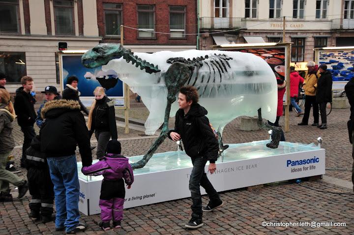 Copenhagen Clicks A Melting Polar Bear