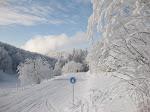 http://lh4.ggpht.com/_Q-b3D5rJSGo/S1LyeBOFMaI/AAAAAAAAB9Q/Hv-cT5-ZVxY/Vosges2010%20148.jpg