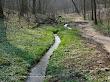 Dolina Potoku Bielańskiego