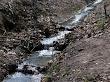 Potok Bielański