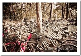 bikes -0500