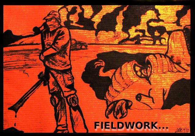 fieldwork...