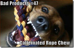 funny-dog-pictures-caffeinated-rope-chew