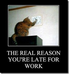 funny-pictures-this-is-the-real-reason-youre-late-for-work