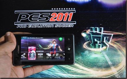 PES-2011-WP7