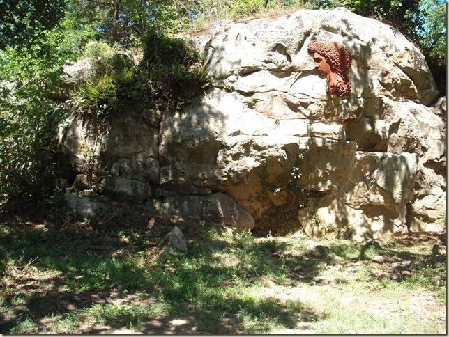 médaillon Némorosa (1024x768)