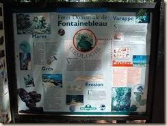 panneaux forêt (2) (1024x768)