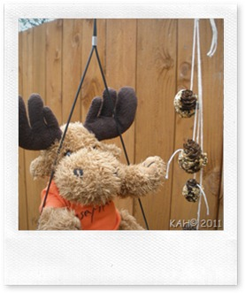 Hanging Pine Cone Feeders - 1