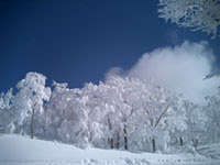 20050122_skijam.jpg