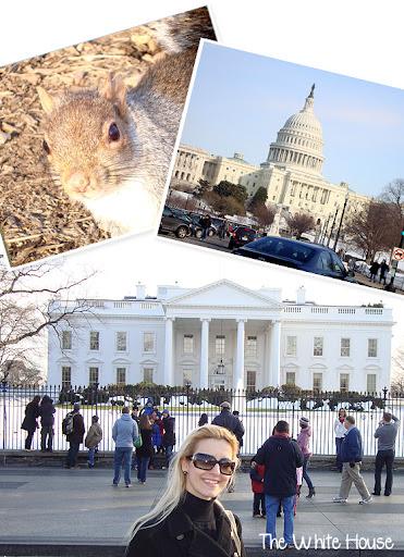 washington6 - Visitando – Washington DC