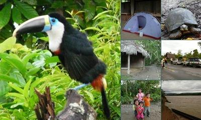 Ver comunidad ecuador