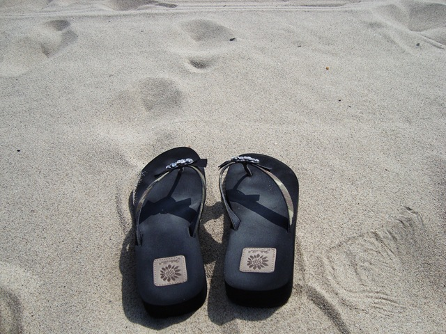 venice beach 027