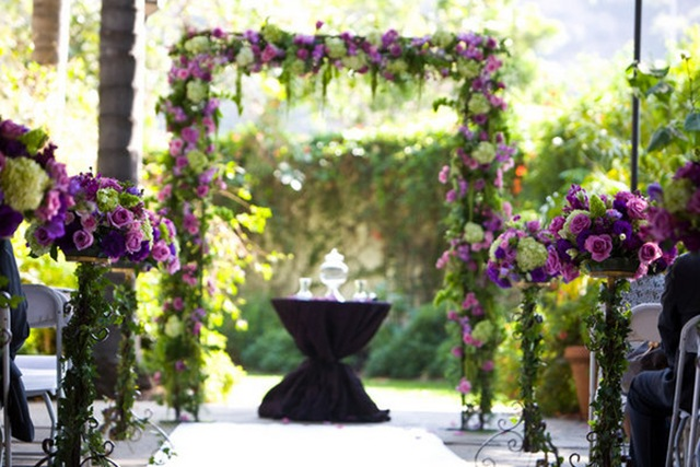 purple_ceremony_9_m