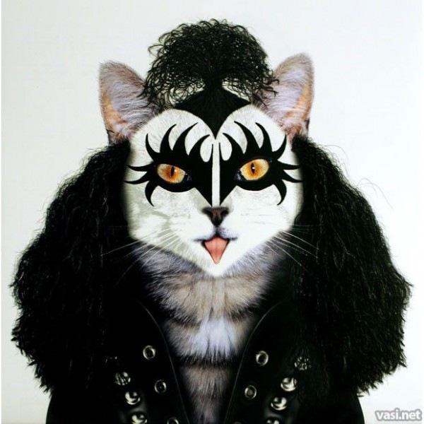 animales rockeros (3)