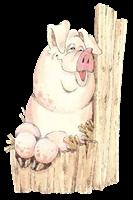 cerdos misimagenesdivertidas.blogspot (3)