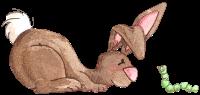 ratones conejos misimagenesdivertidas.blogspot (9)