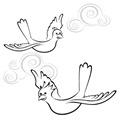 palomas paz (16)
