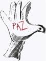 palomas paz (23)