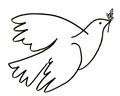 palomas paz (29)