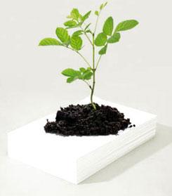 coluna zero, meio ambiente, papel semente, marketing, greenwashing