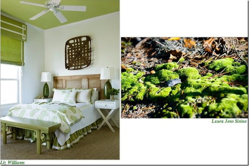 Liz Williams Bdrm Moss2
