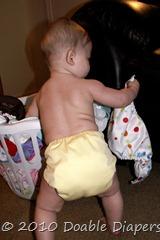 Elaine 6 months diaper laundry