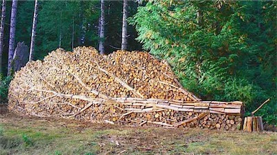 Pretty Woodpile