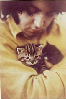 Paul McCartney celebrity and cat