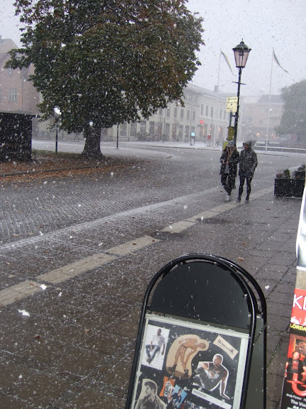 Ja se det snöar, ja se det snöra....