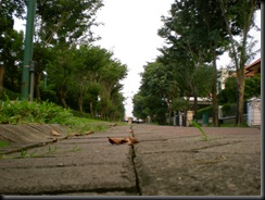 Panoramic Jalan (7)