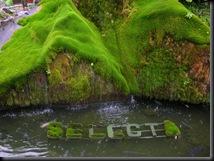 Selecta - Batu (145)