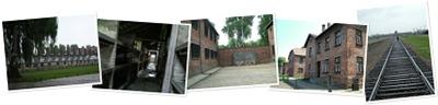 View Auschwitz-Birkenau