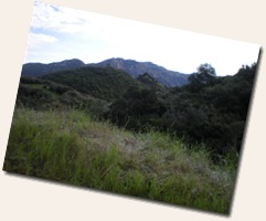 PCTR Malibu Creek 2