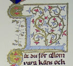 My eighth scroll, A look at the initial