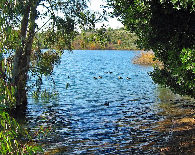 Lake Jennings #1 | San Diego (CA) Photos