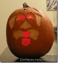 schnauzer pumpkin