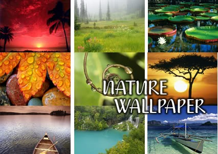 high quality nature wallpapers. 46 High Quality Nature