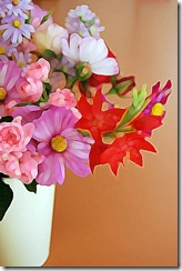 Mitty's flowers 16