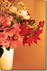 Mitty's flowers 10