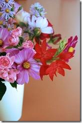 Mitty's flowers 11