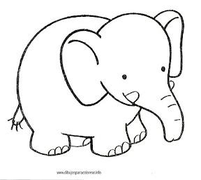 animales-salvajes-elefante00.jpg