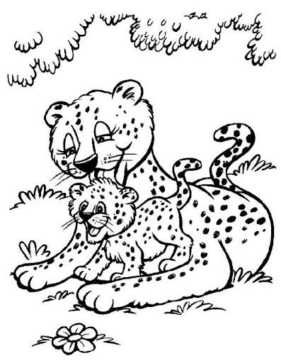 leopardo y cachorro dibujos para colorear leopardos