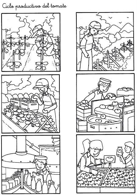 Circuito Productivo Del Tomate : Colorear secuencias temporales para niÑos