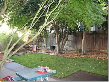 070721_backyard2