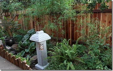 100703_woodland bamboo