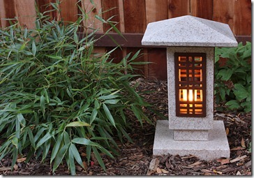 craftsman-lantern-fargesia-robusta